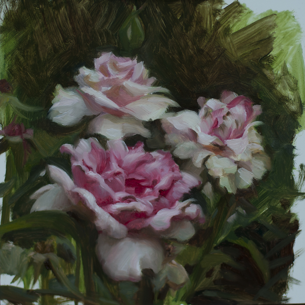 roses_150.jpg