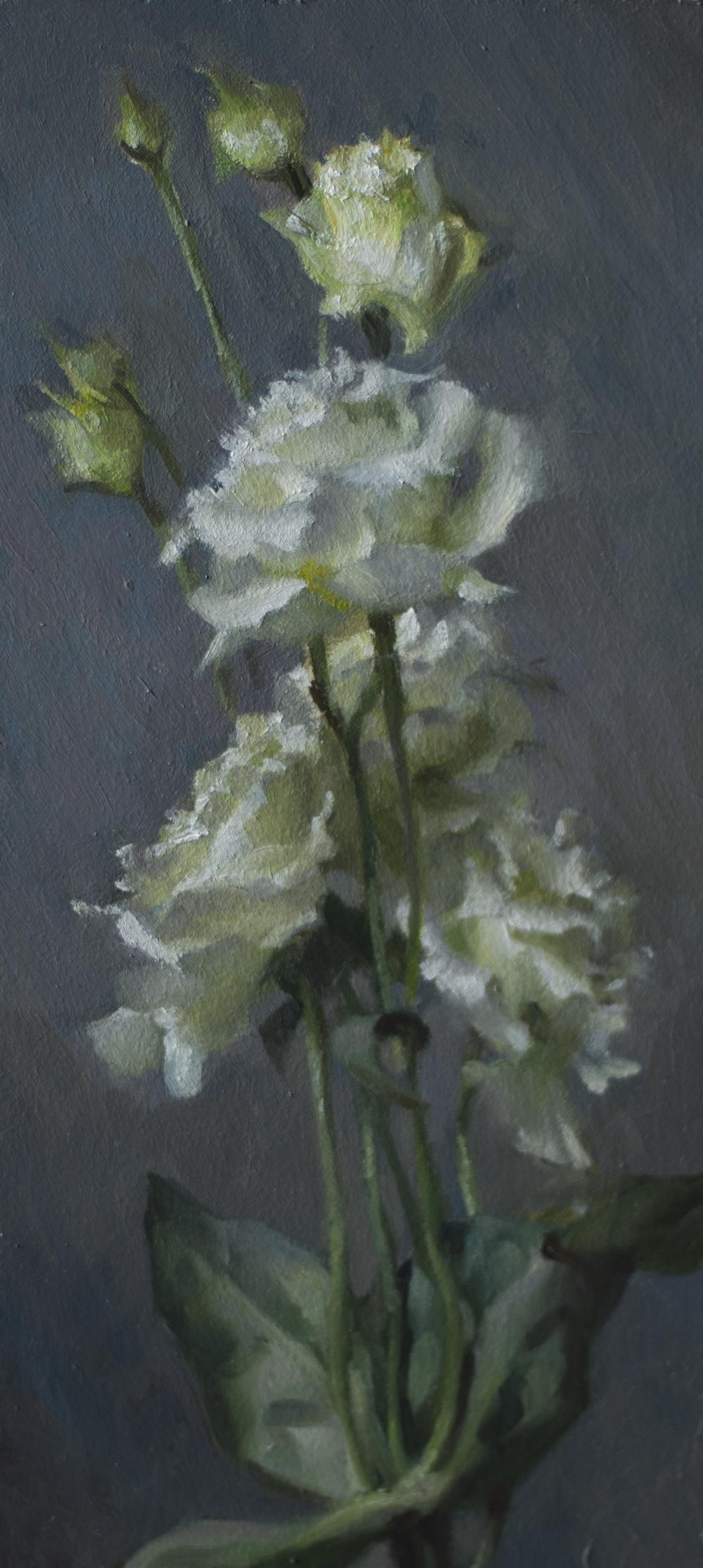 white Lisianthus_150.jpg
