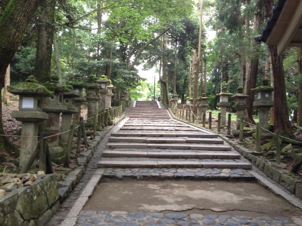 Japan Pathway.jpg