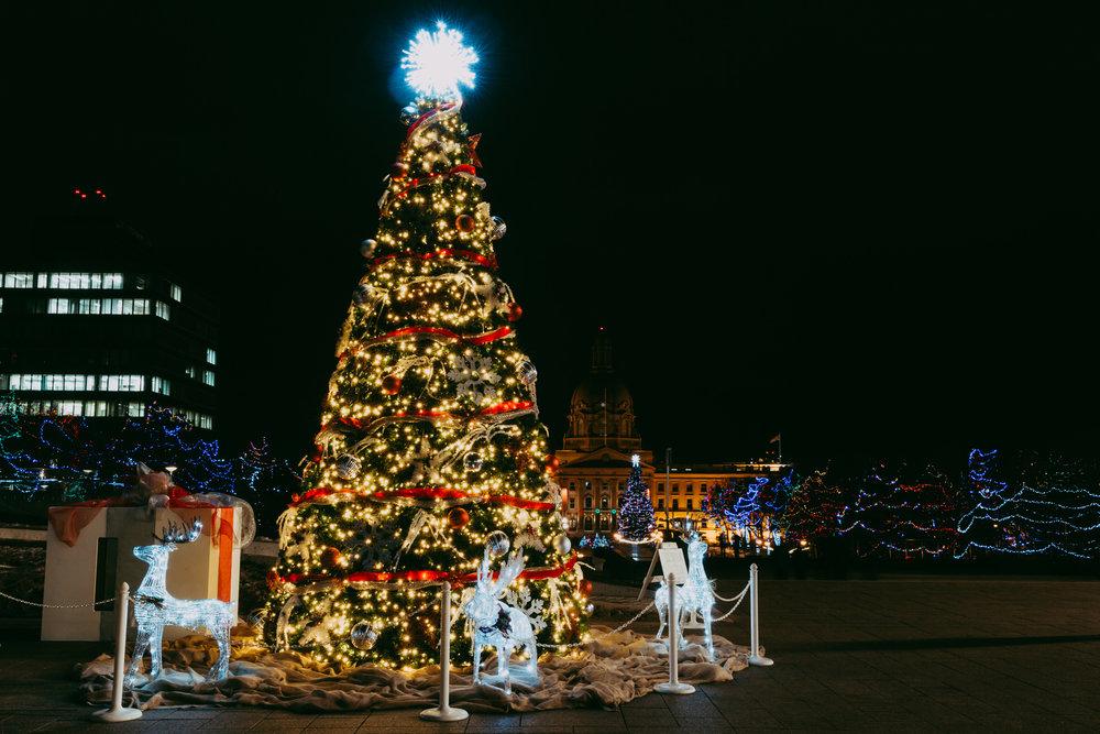 _MGL0059_December 14, 2017.jpg