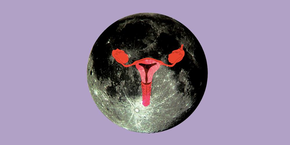 menstrual.png
