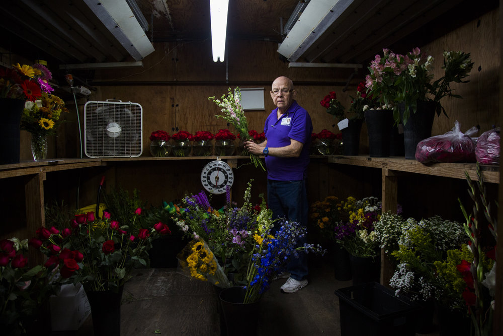 Felix Perez, 67, rearranges a handful of flowers in Devereux Gardens' flower cooler during one of his work days in Victoria, Texas on Nov. 9, 2017. Perez has always loved working in floral but after being laid off from his job in the floral department of H-E-B he was out of work for months. Thanks to Texas Work Force Commission he was able to get a job at Devereux Gardens doing what he loves again.