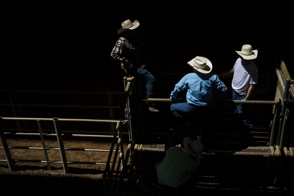 A group of bulls riders gather in the pens during the Junior Cypress Memorial Rodeo at the Junior Cypress Rodeo Arena in Clewiston, Fla. on Saturday, March 17, 2018.