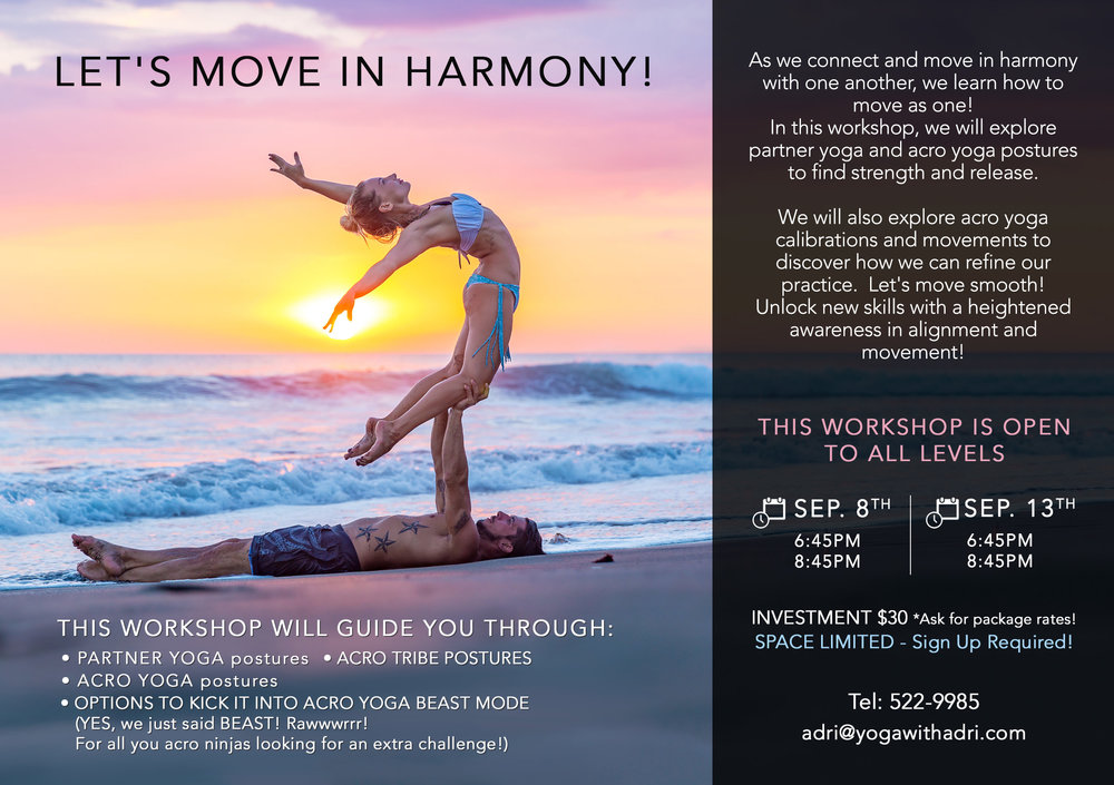 ACRO YOGA PARTNER WORKSHOP
