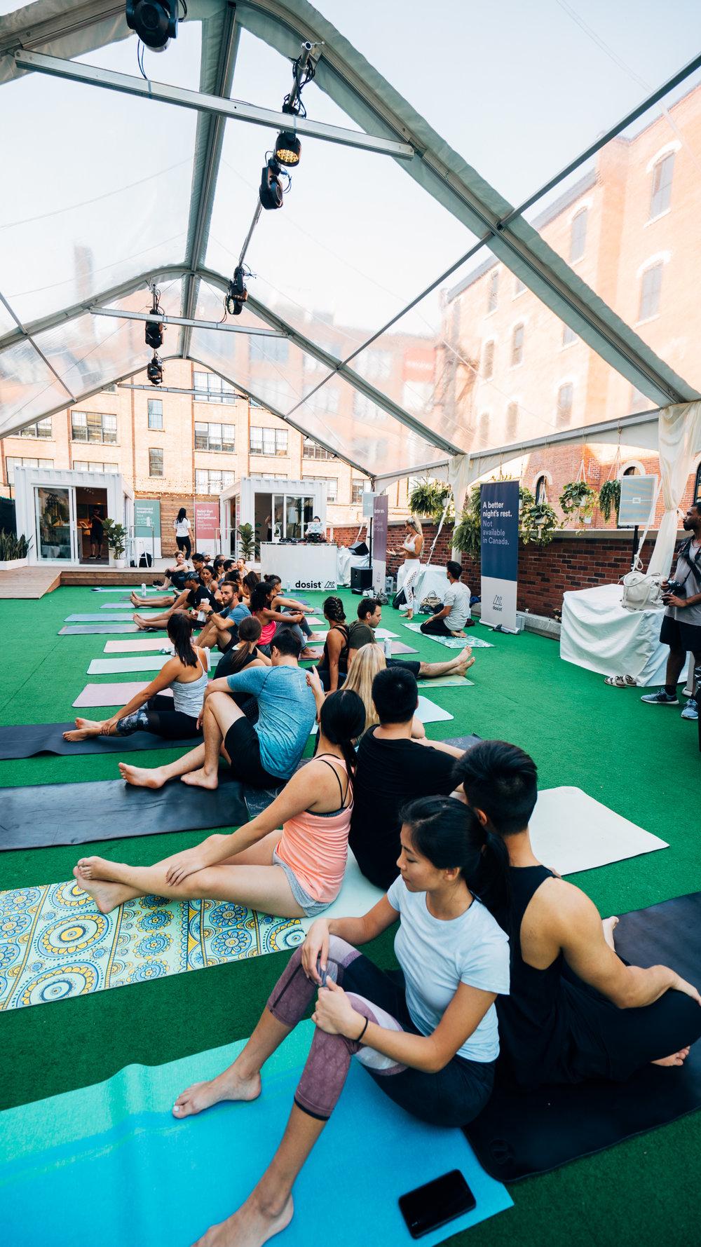 toronto-acro-yoga-buddhas.jpg