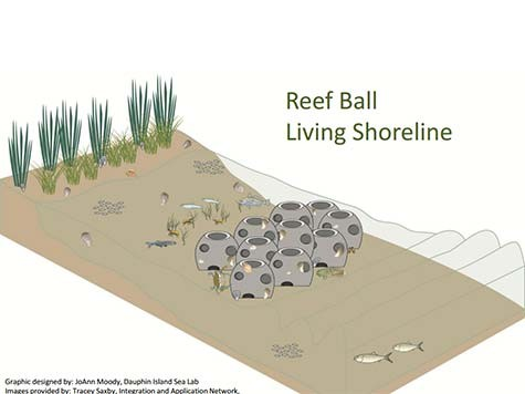 1-Reef-Ball-Living-Shore-Line-Design1.jpg