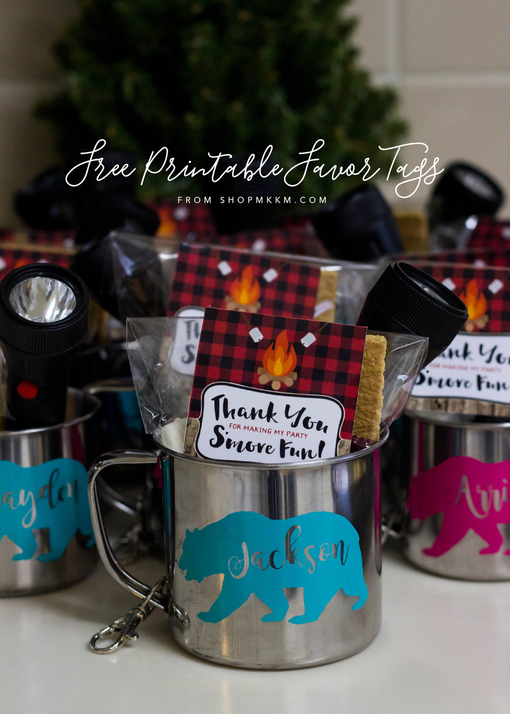 Free Printable Favor Tags. Thank You For Making My Party S'more Fun.