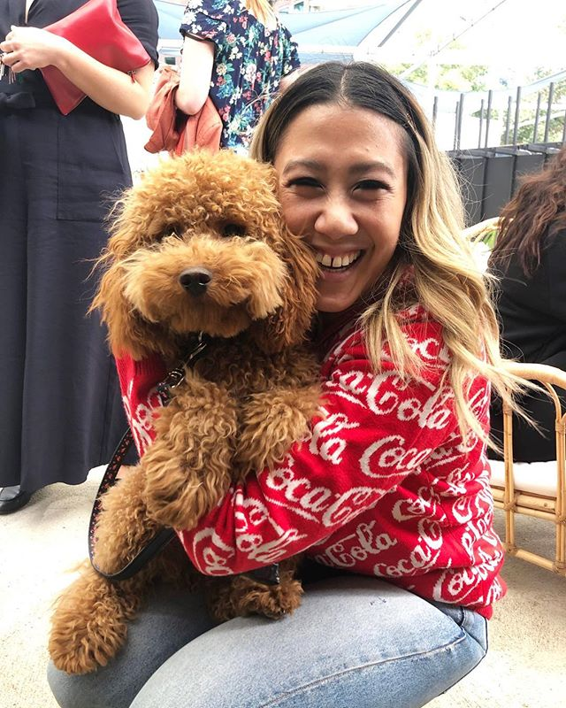 We're not sure who is happier to have their photo taken @cookahchuu03 or Harvey?! 🐶🤷♀️ They say having a dog in the office improves productivity... but we won't lie, when they are as cute as this it might seem like a slight distraction!  But taking short breaks away from your desk to spend time with playful pups, is where research has found that giving yourself a bit of a breather allows you to give your mind a bit of a break - And we won't argue with that!  Join the team and Harvey next Monday for coffee on us via the free trial sign up link in our bio! 🐶