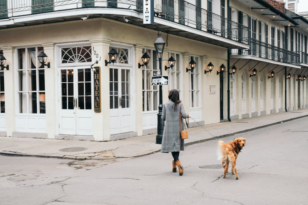 Dog_Friendly_Guide_to_New_Orleans-5466.jpg