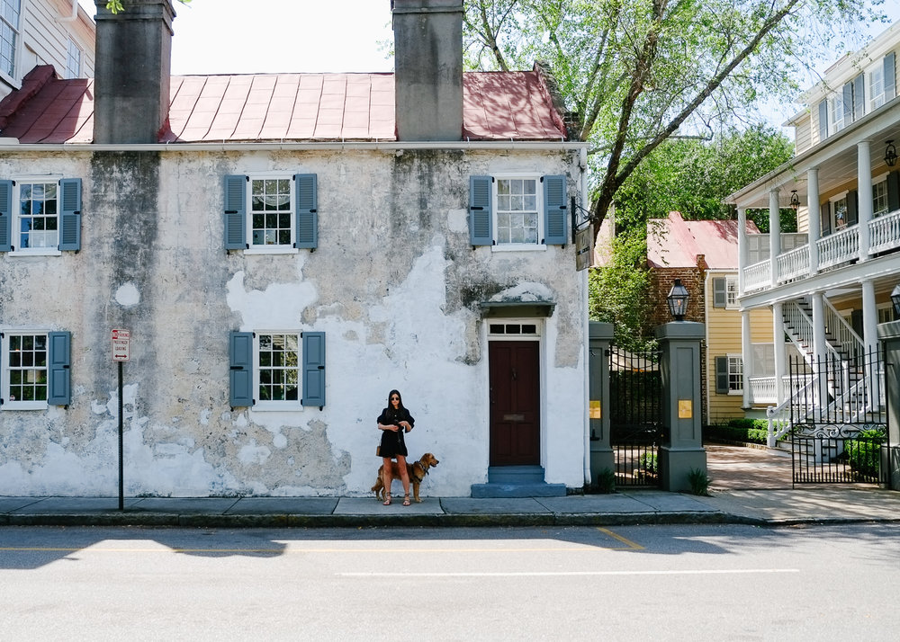 SUNDAYS_Dog_Friendly_Travel_Guide_Charleston-7510.jpg