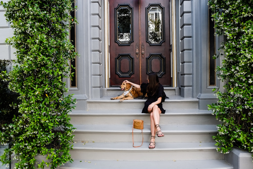 SUNDAYS_Dog_Friendly_Travel_Guide_Charleston-7692.jpg
