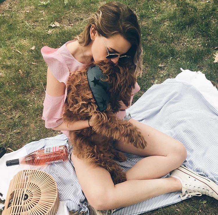 SUNDAYS dog bandana superstar crosby picnic.jpg