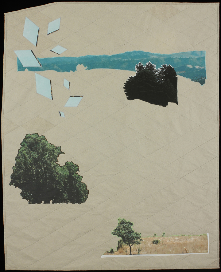 "Reimagining Worlds I, 2013 59""x48"" Quilt: linen canvas, kona cotton, thread, batting,"