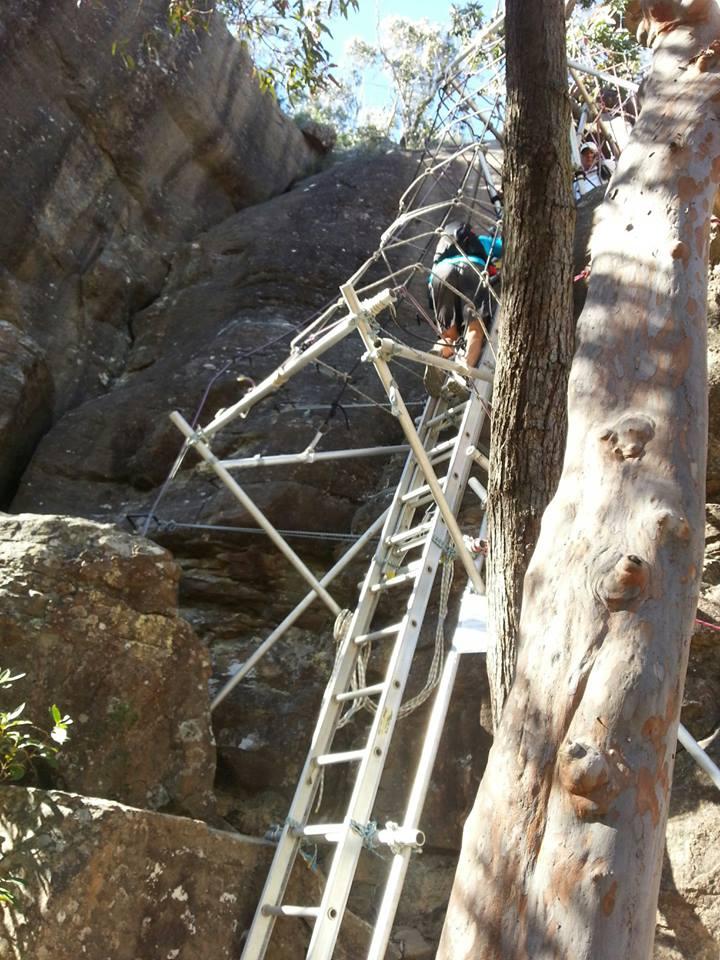 NF Ladder