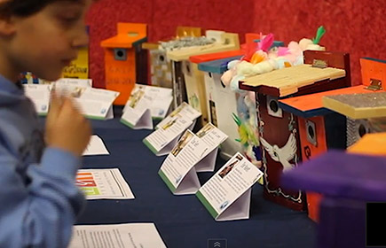 Student's bird boxes
