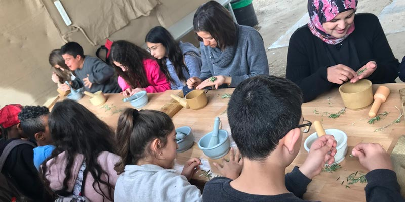 A social venture business sharing the wisdom and spirit of Bedouin medicinal tradition through workshops and cosmetic and herbal healing products.
