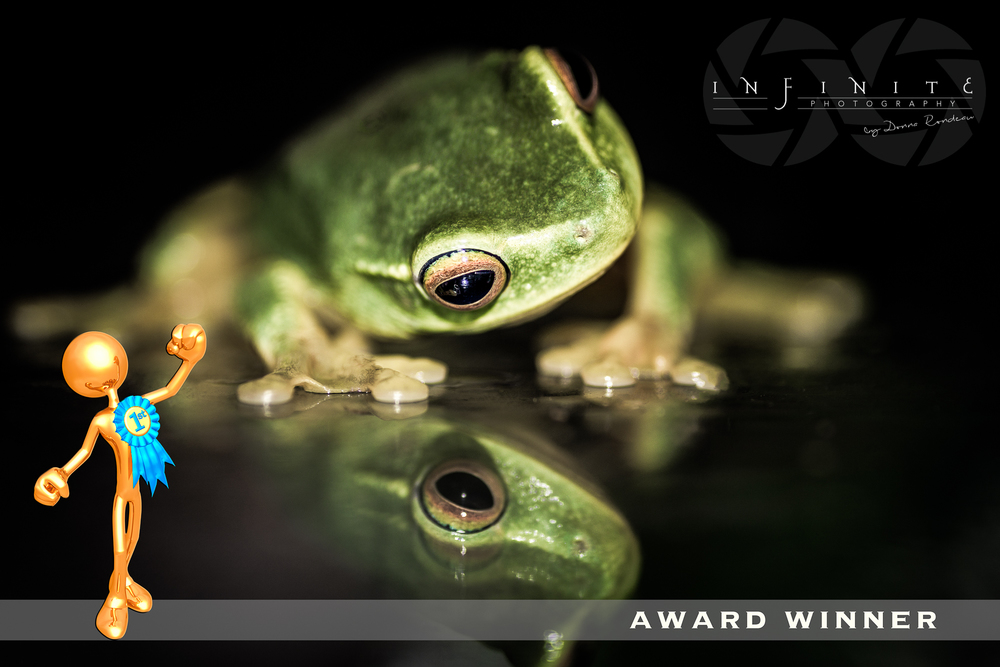 Reflection: 1st Place Judges choice on Viewbug: 2015