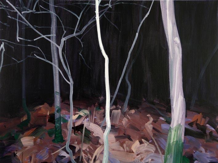 Forêt 13 acrylique sur toile 97 x 130 cm
