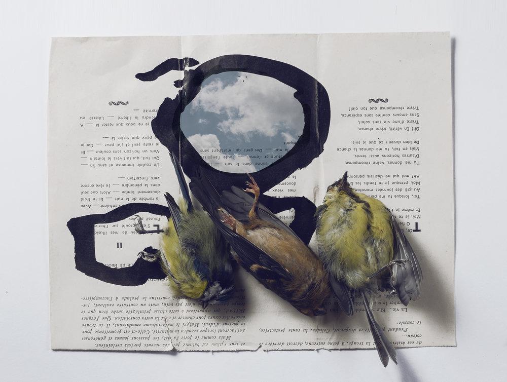 Carole Charbonnier - le ciel.jpg