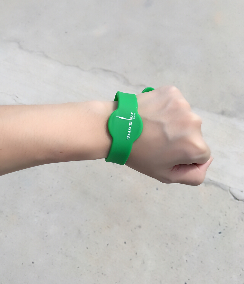 THE FUSS FREE WRISTBAND YOU CHARGE ALL YOUR EXPENSES TO!