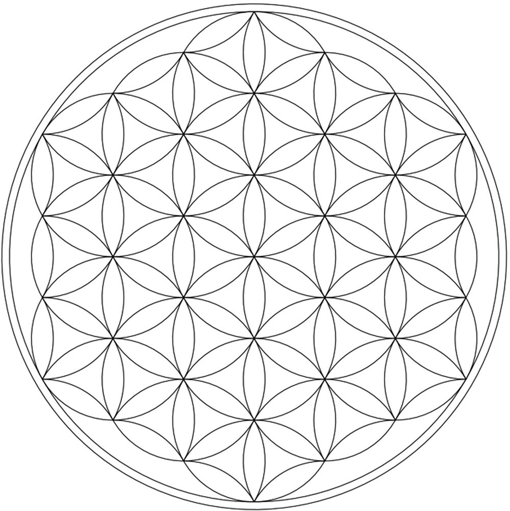 flower of life big transp.jpg
