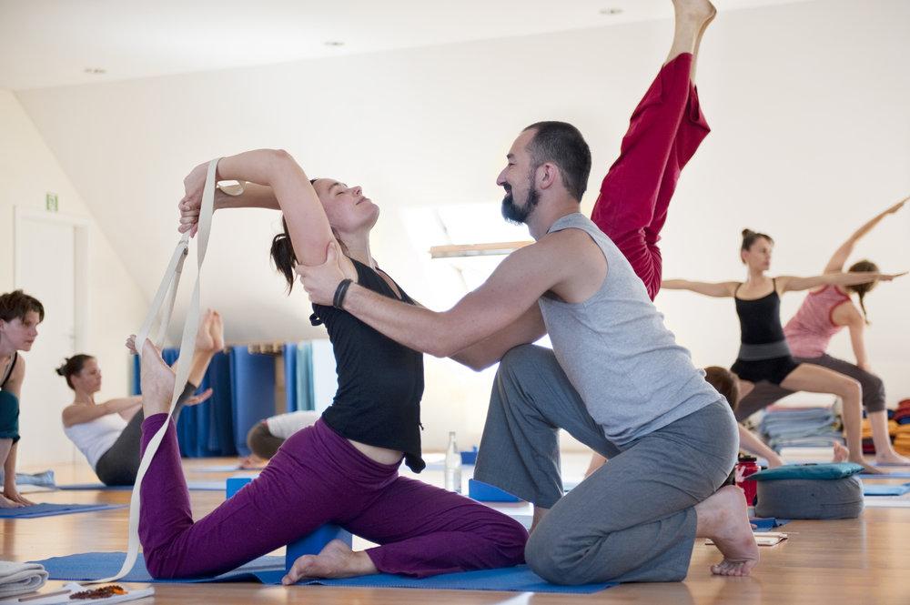 Element Yogalehrer werden_Katharina Rose.jpg