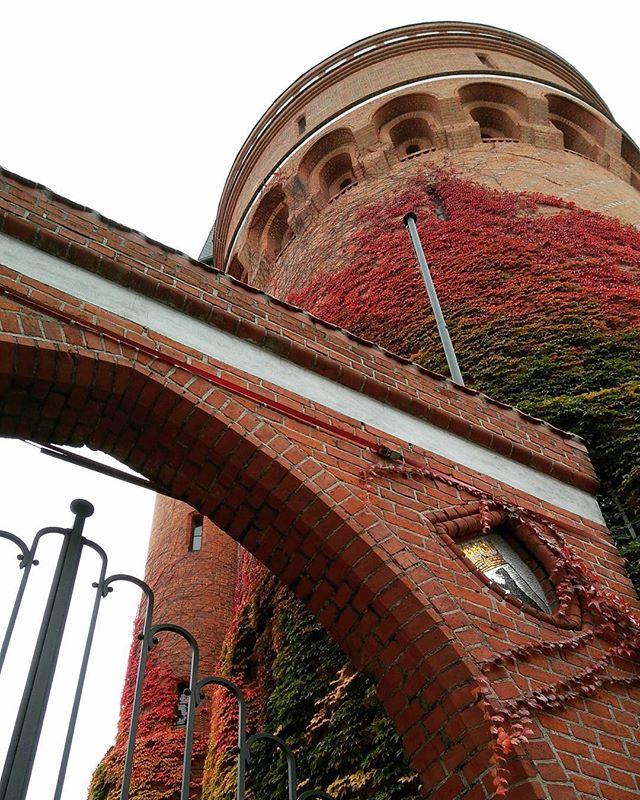 #autumn #bergmannkiez