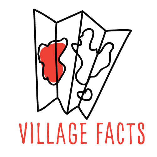 VillageBabies-facts.png