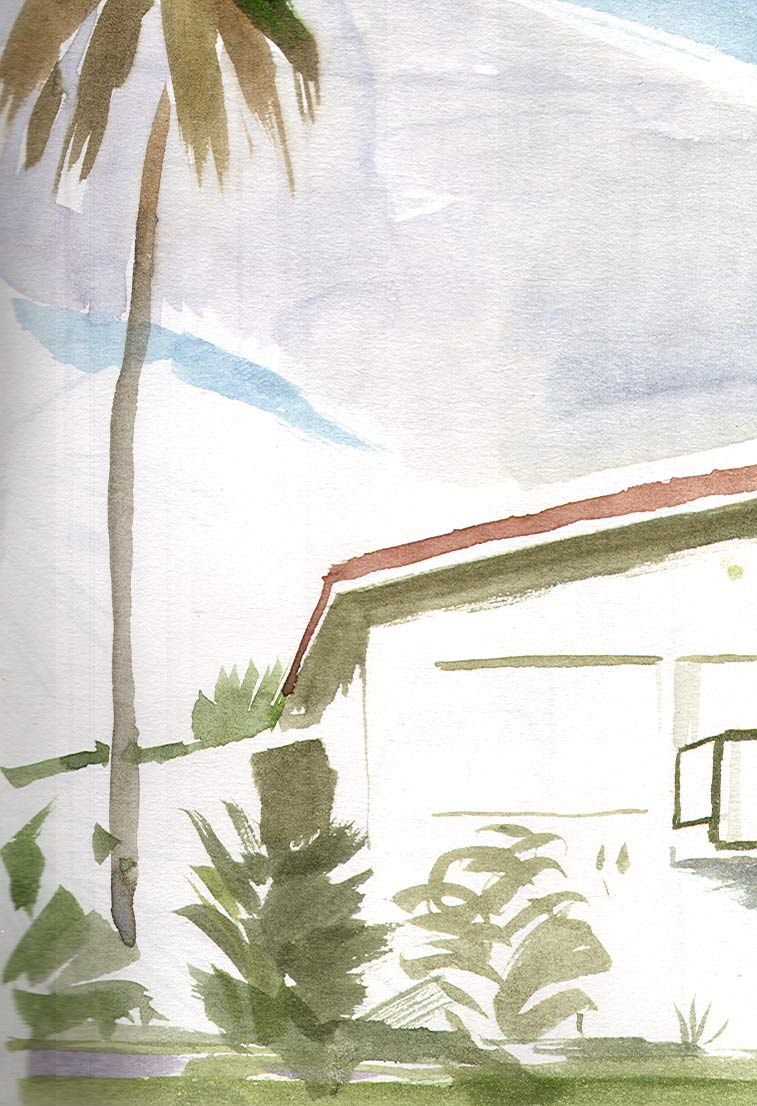 House_with_a_palm_tree_AntiguaWEB.jpg