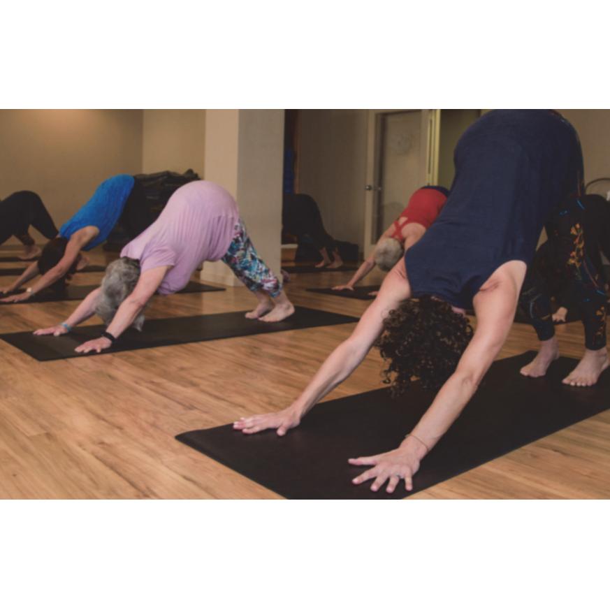 3551c9fef3672 Beginners Yoga (4-wk Mini-Session) with Heather Thamer
