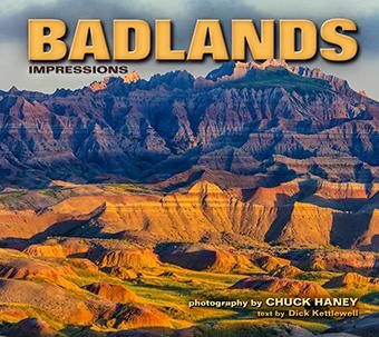 Badlands Impressions.jpg