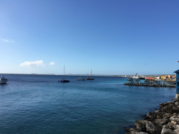 Bonaire. Photo taken from a previous trip this year in January 2016