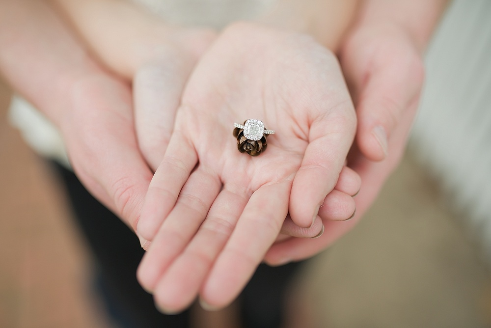 colonial-williamsburg-proposal-engagement_0023.jpg