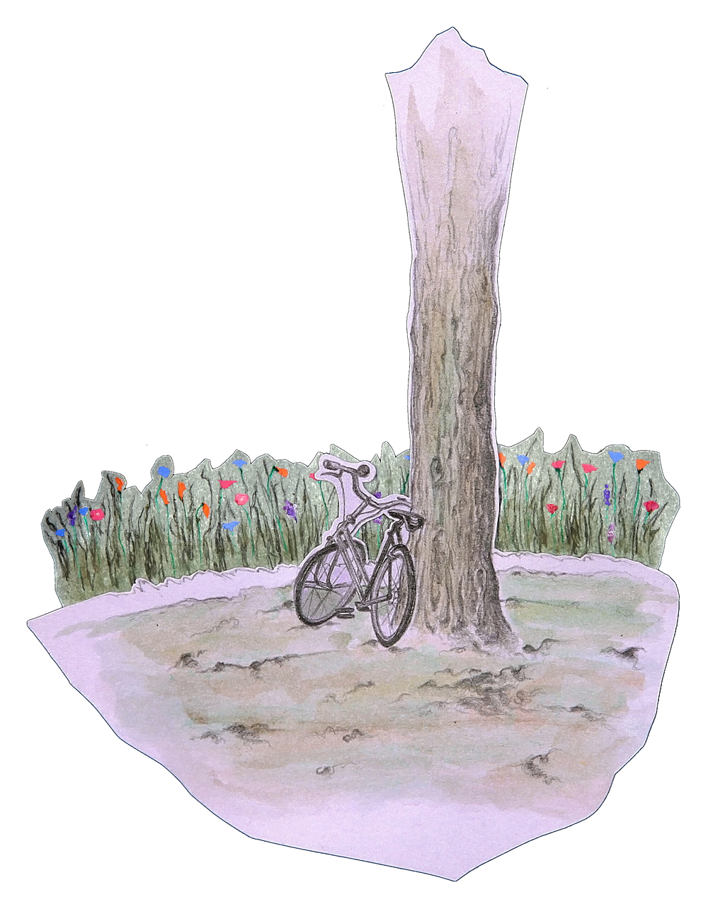 Bicycle Amongst Flowers.jpg