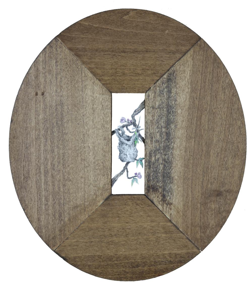 Oriole's Nest.jpg