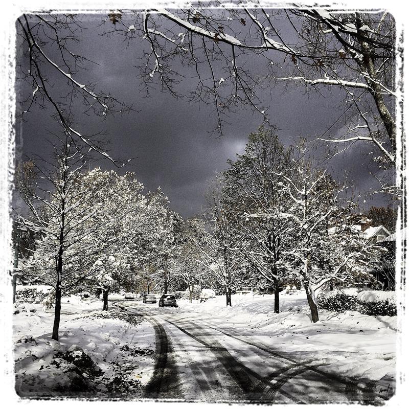 186 4699 CH Winter 7.5.jpg