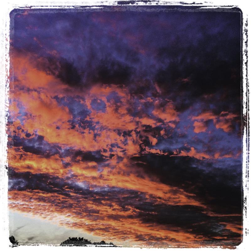 188 3619 Walton Field Sunset 7.5.jpg