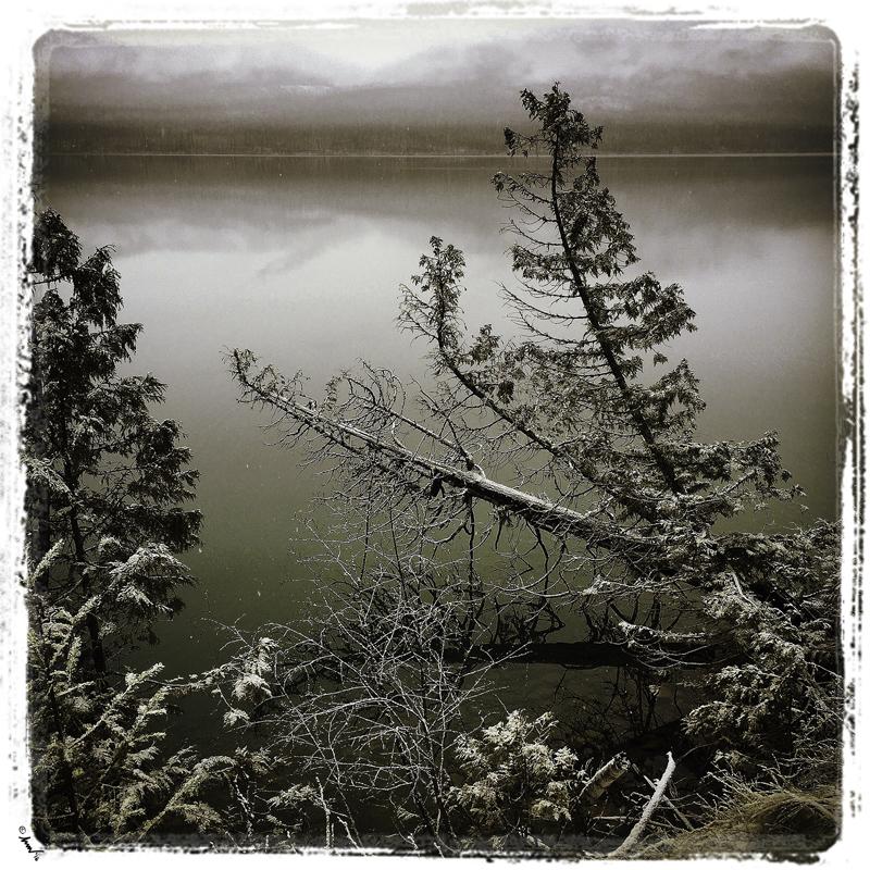 199 1495 Lake McDonald Winter shore 7.5.jpg