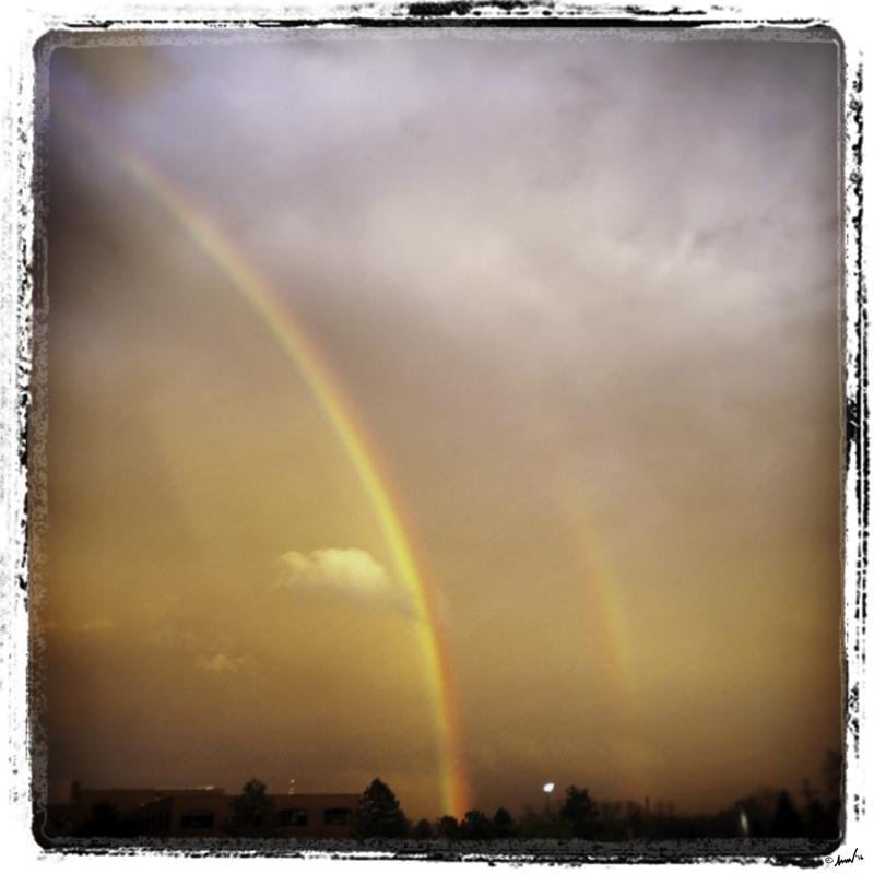 199 4769 CRC Rainbow 7.5.jpg