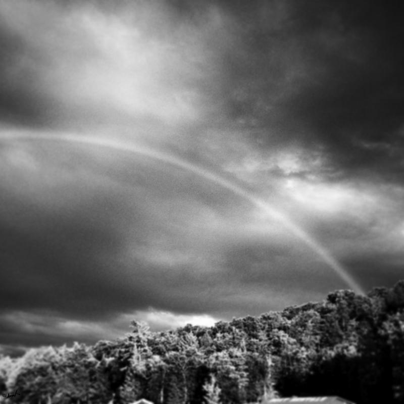 200 8511 ADK Rainbow 7.5.jpg