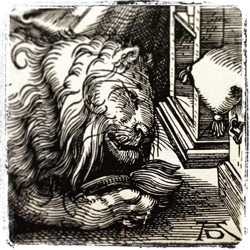 203 0155 Durer's Lion CMA 7.5.jpg