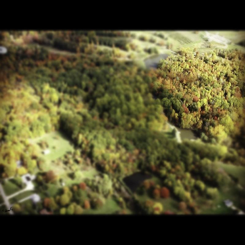 1993 Aerial 7.jpg