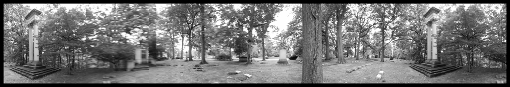 Monuments, Trees, Monuments, Lakeview 2016.jpg