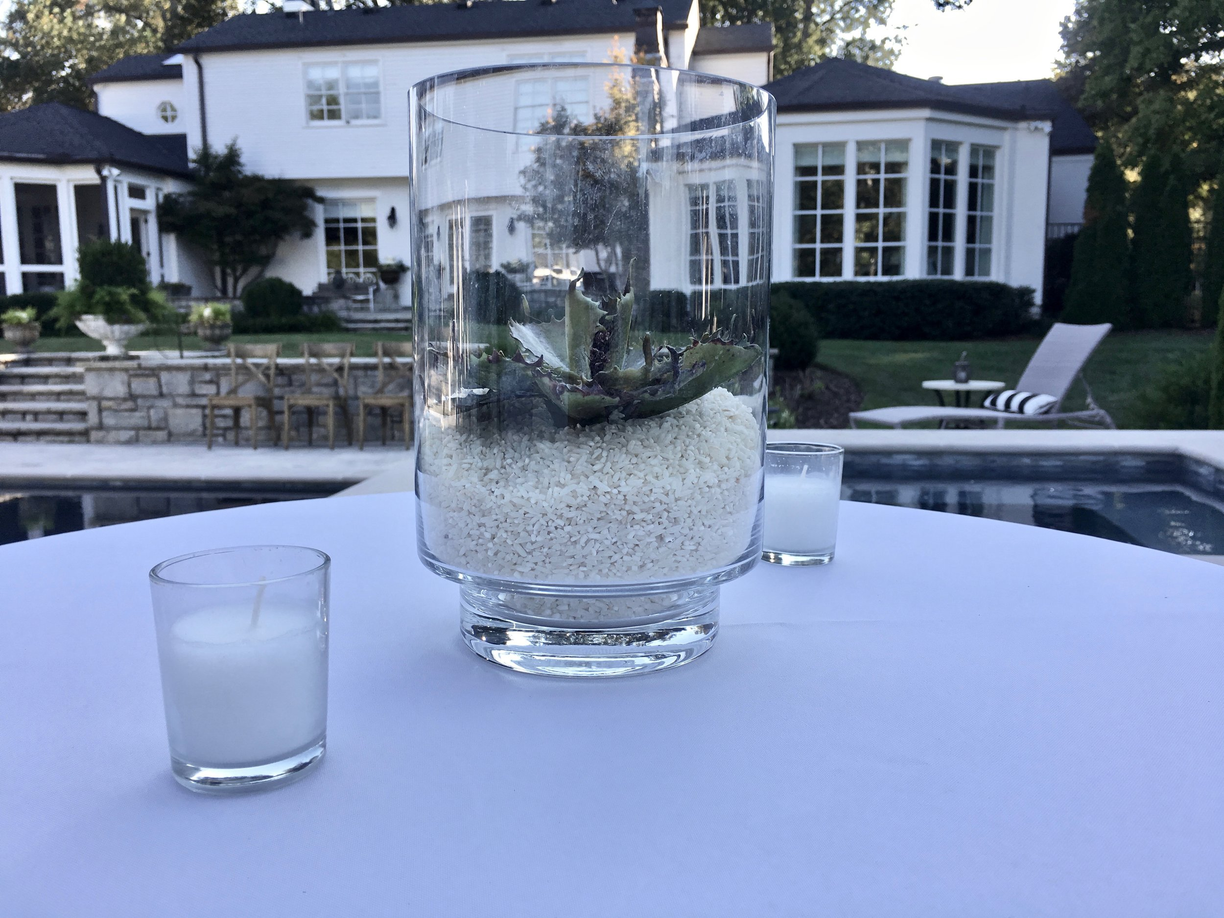 Succulent centerpiece in glass vase with rice