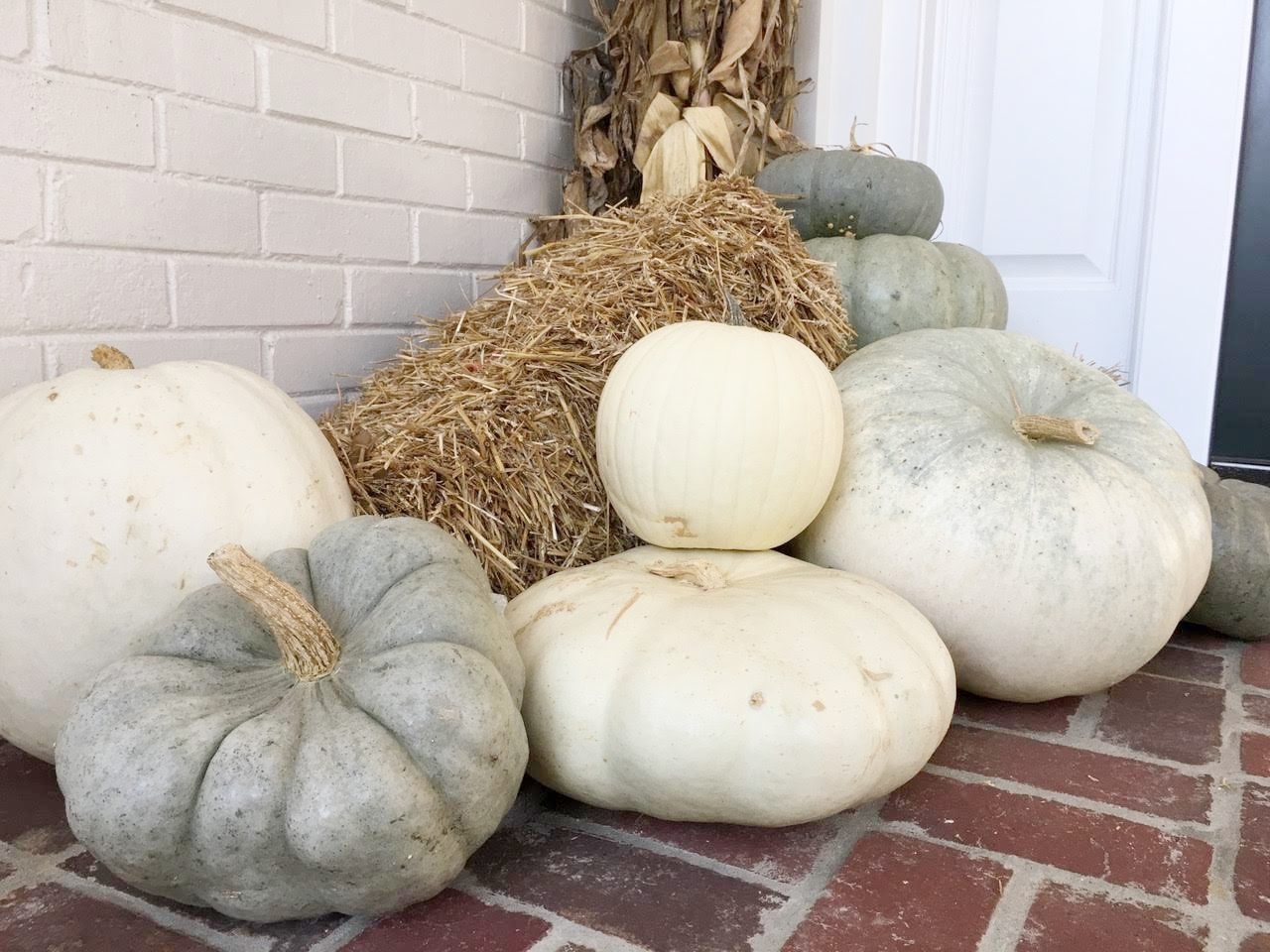 Gray, Green and White Pumpkins