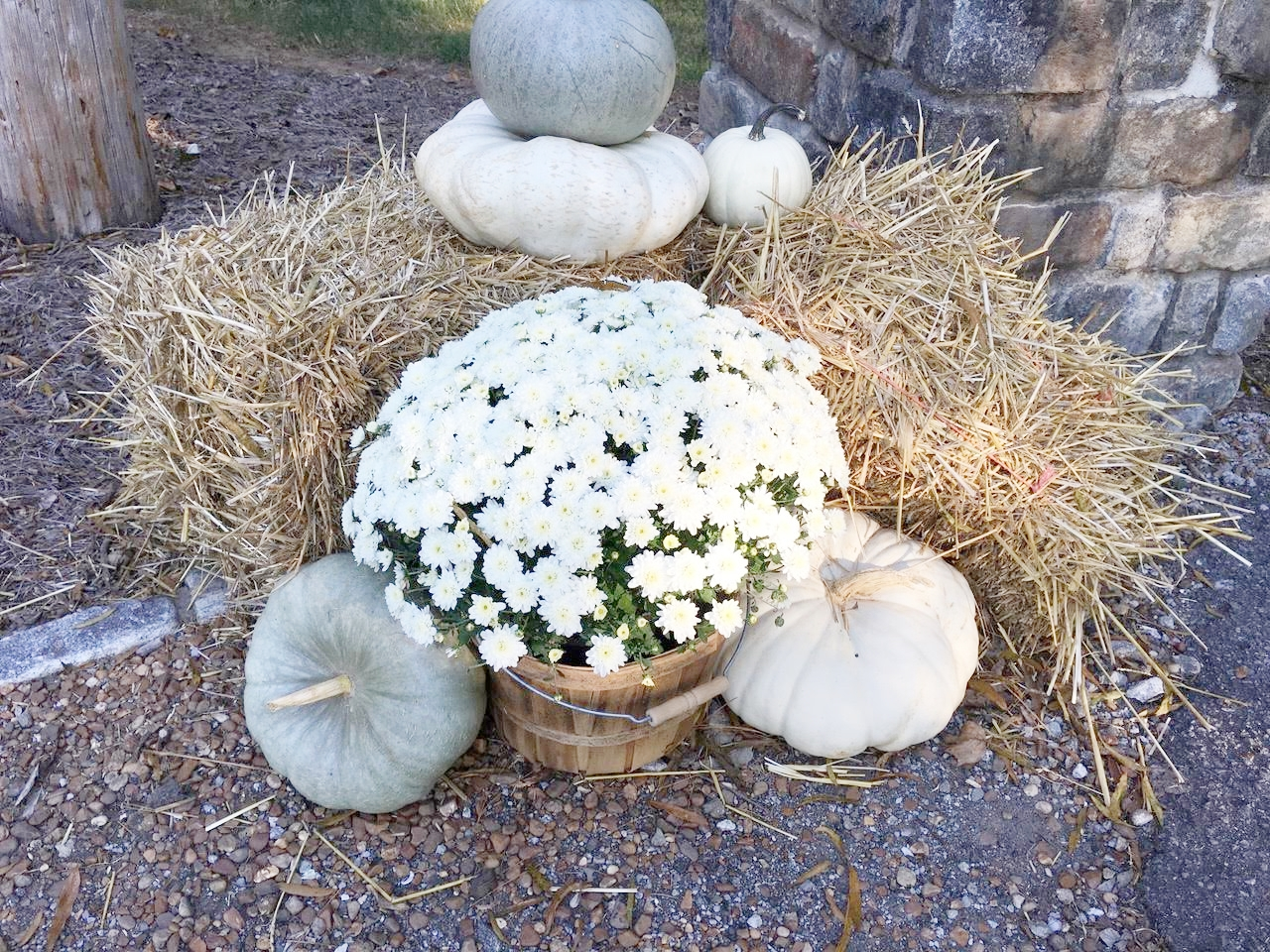 Fall Mailbox Decorations