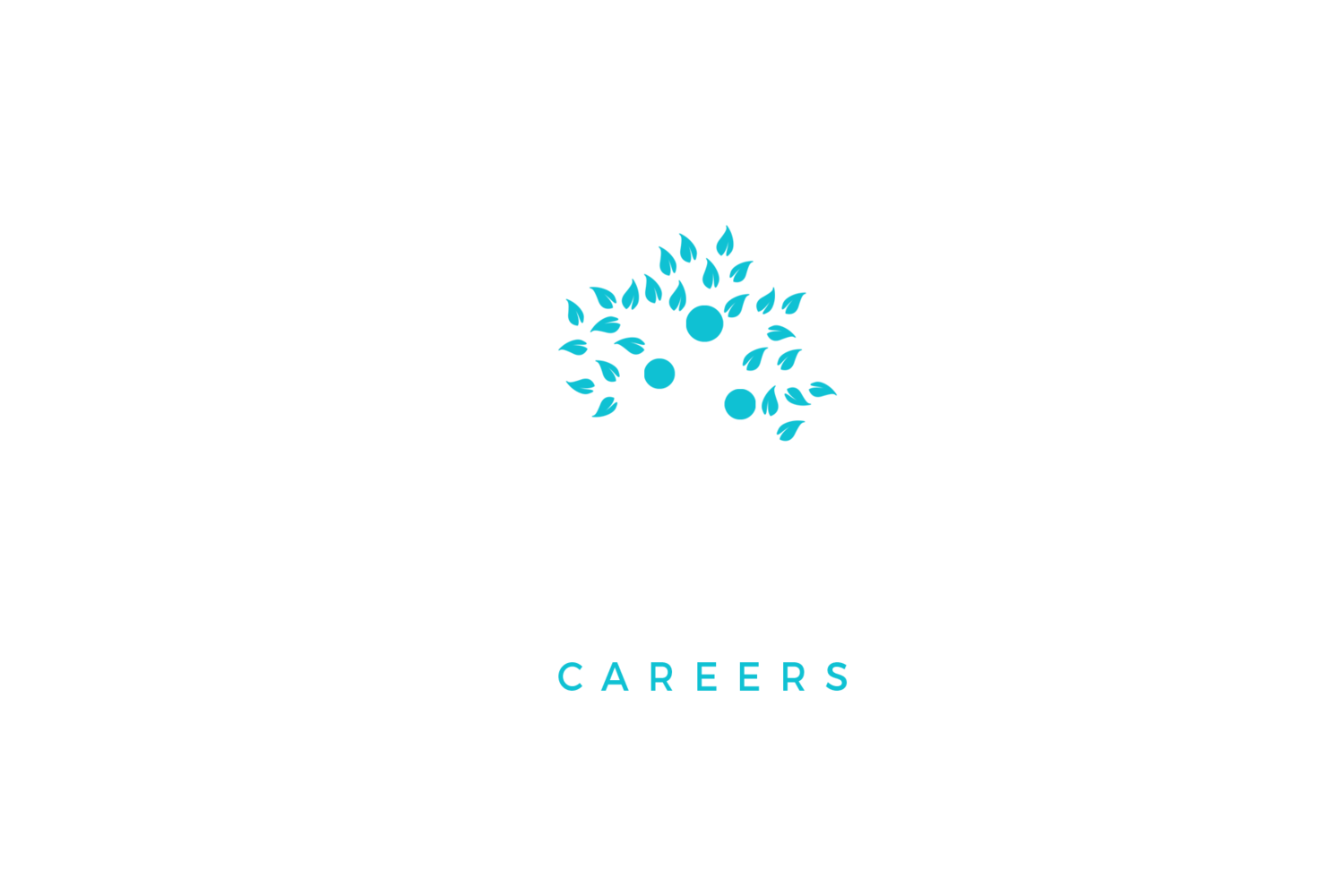 Designed Careers