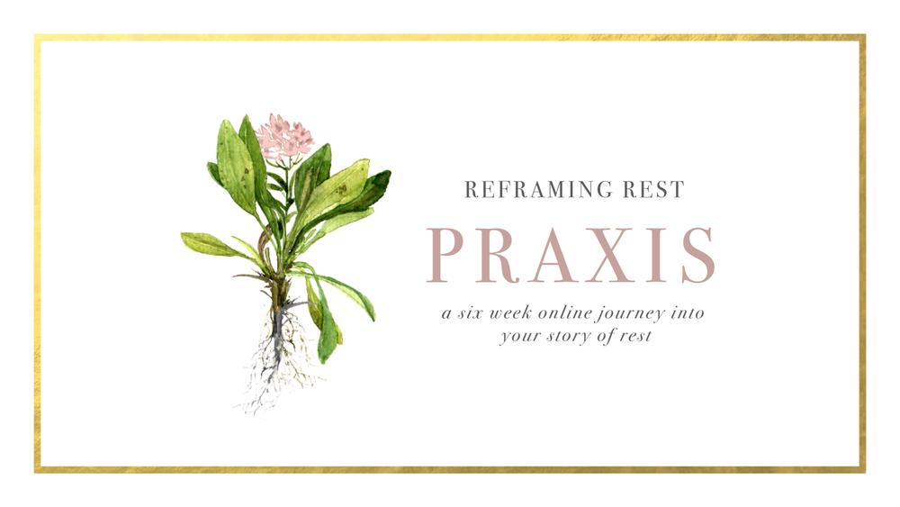 PRAXIS_WebisteHeader.png
