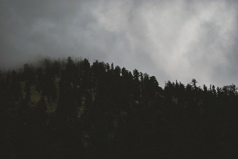 mt baldy woods-1-2.jpg