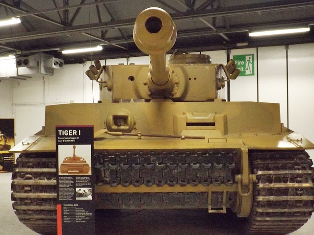 Tigere 131.jpg